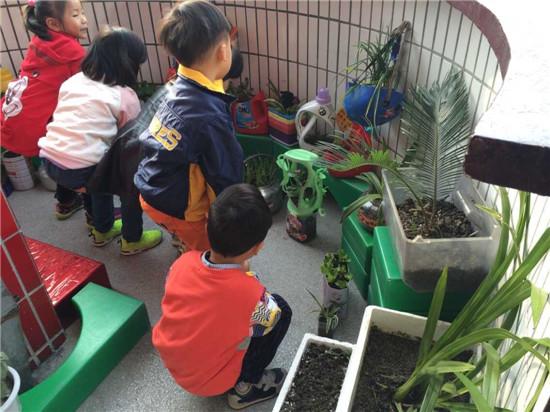 江苏一幼儿园教孩子用废旧塑料瓶罐制花盆