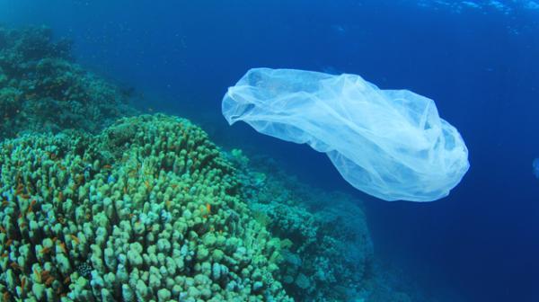 海洋垃圾污染问题日益严重 各机构组织陆续发声